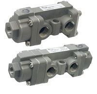 Versa Stainless Steel Valve - BSP Series